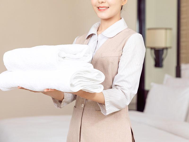 客房卫浴-毛巾架DH-01